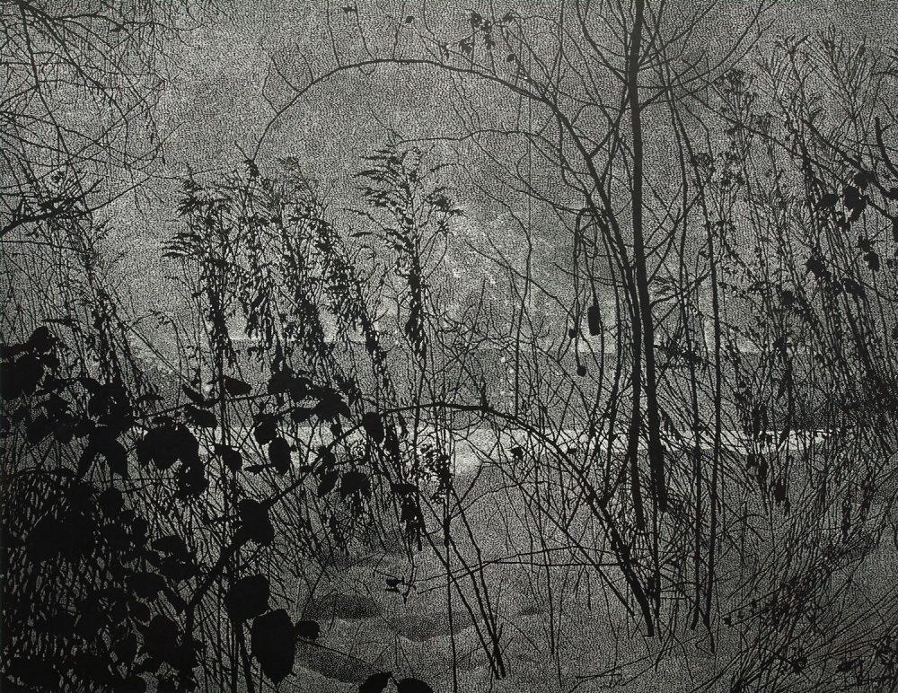 Dickicht (2010), Linolschnitt auf Papier, 114 x 147 cm, Ed. 5