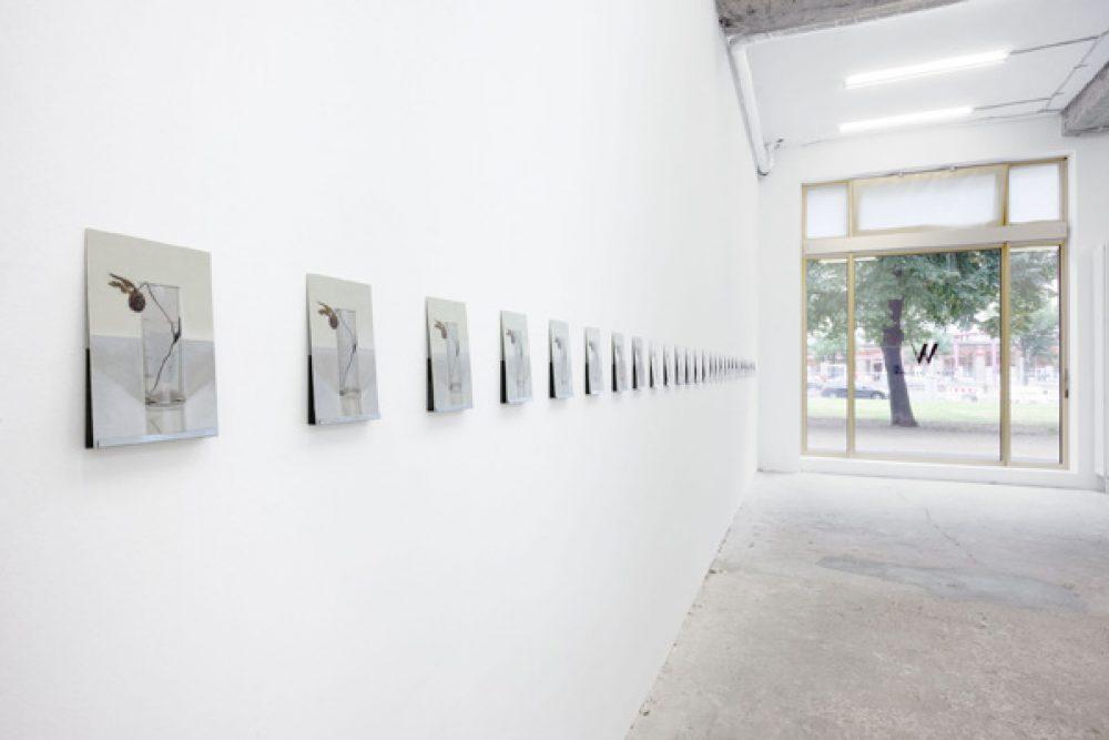 """Installationsansicht """"Die Kleeblume"""" 2012 Galerie Wagner + Partner"""