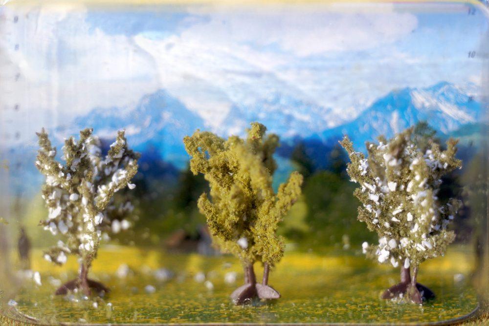 Kleine Bäume (2004), Lamba-Print, 40 x 60 cm, Ed 7